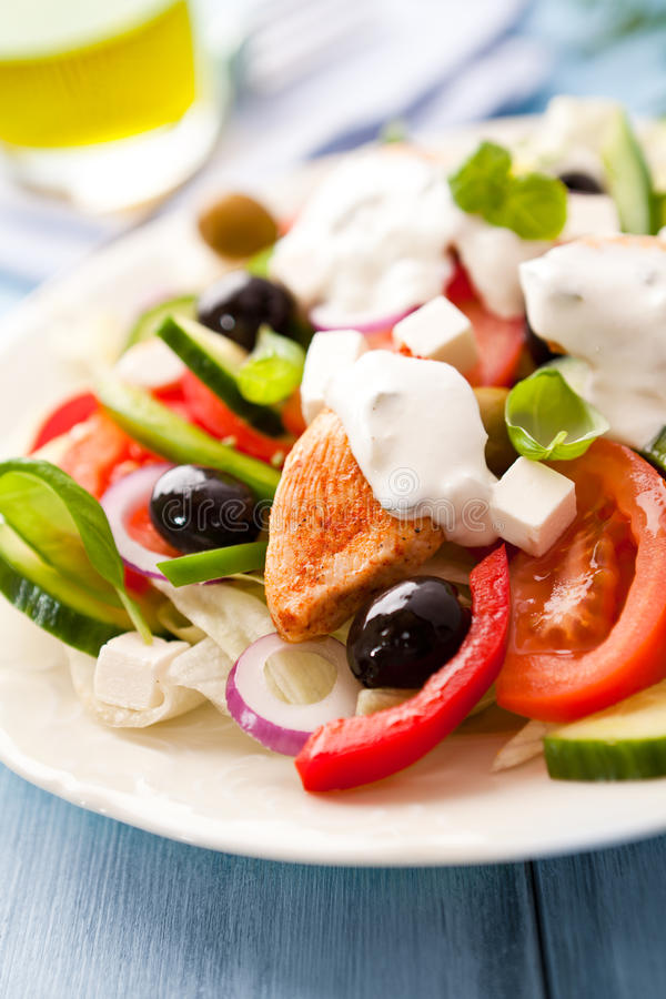 Chicken salad with tzatziki sauce royalty free stock photos
