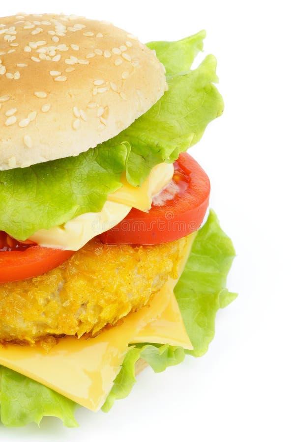 Chicken Sandwich stock photos