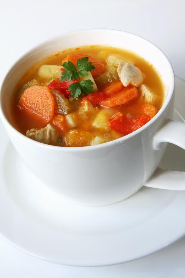 chicken soup vegetable στοκ εικόνες