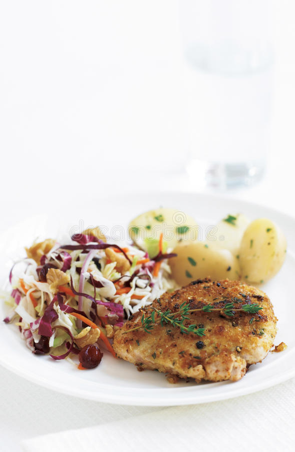 Download Chicken thighs stock image. Image of cabbage, chopped - 11557005