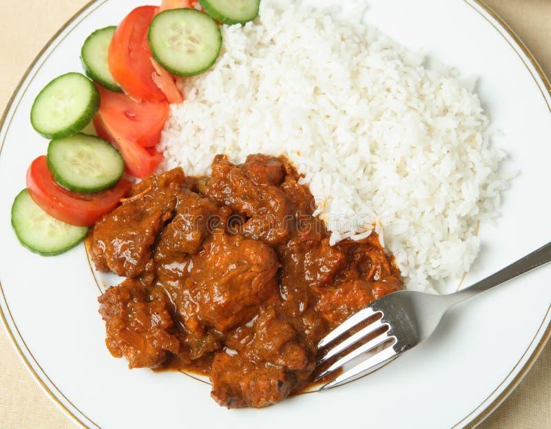 Download Chicken tikka masala stock photo. Image of rice, fork - 23208872