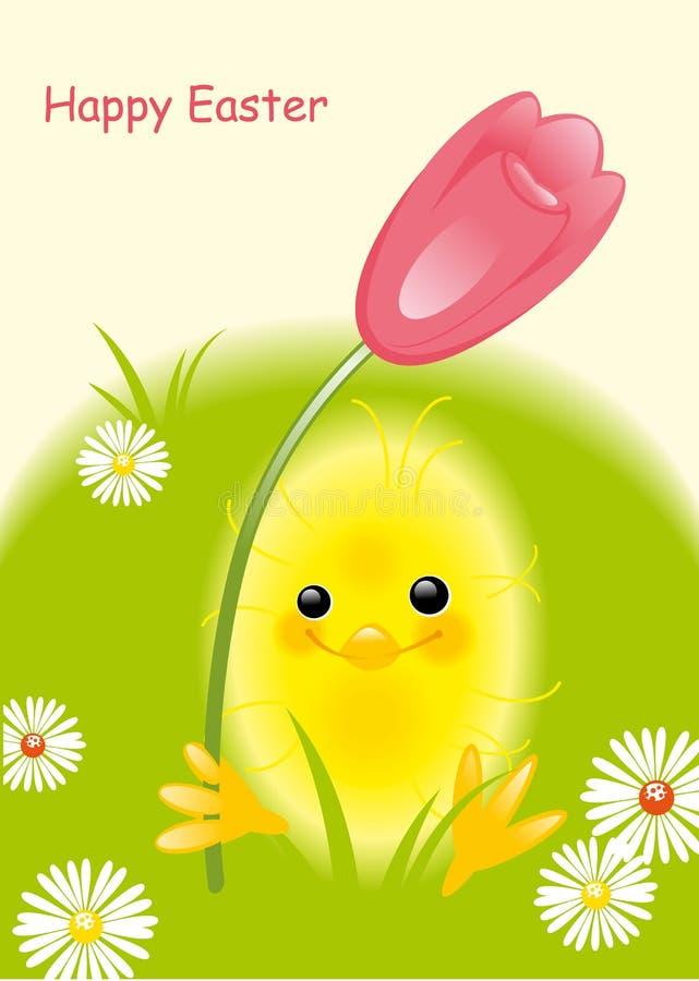Chicken and tulip vector illustration