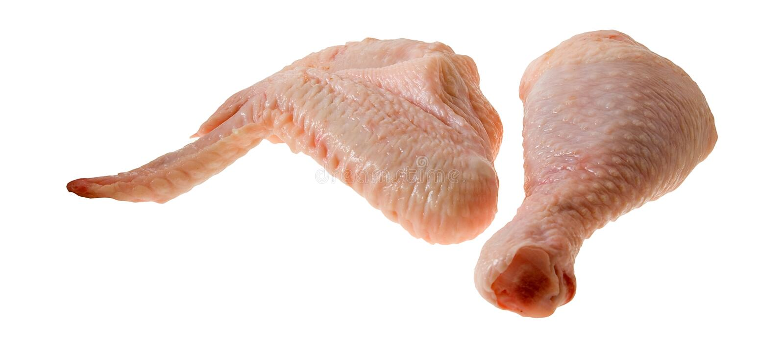 Chicken5 royalty free stock image