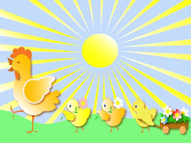 Chickens vector illustration