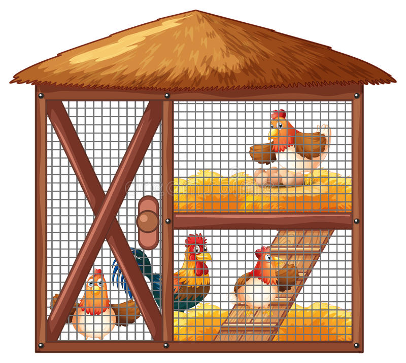 Chickens in chicken coop vector illustration