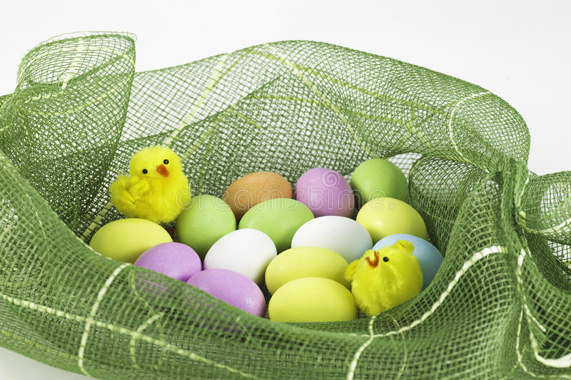 Chicks in Easter basket with eggs royalty free stock image