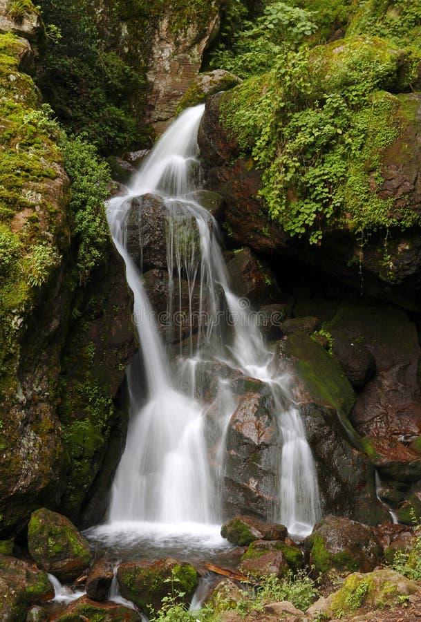 Chico cascade I stock foto