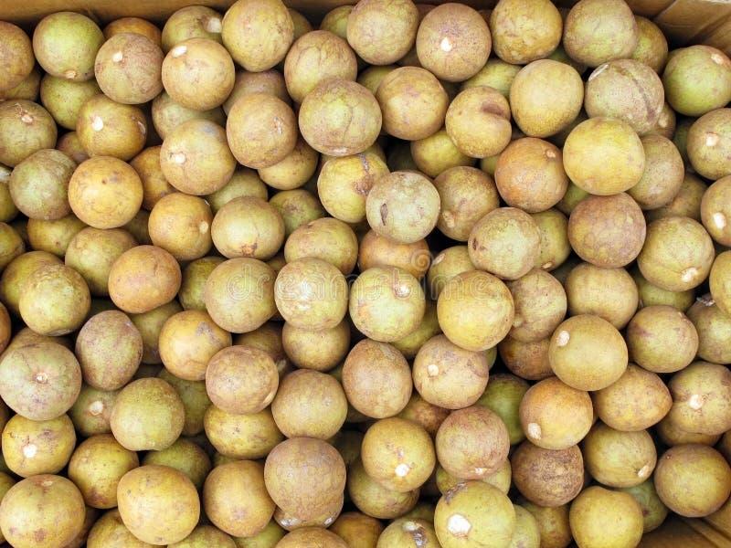Chico Fruit royalty-vrije stock foto