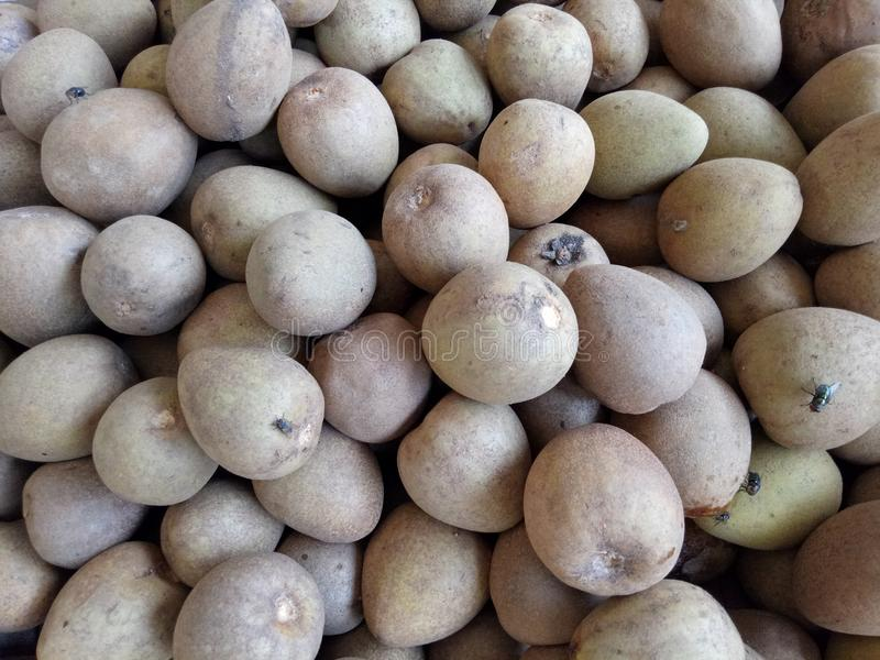 Chico Fruit stock foto