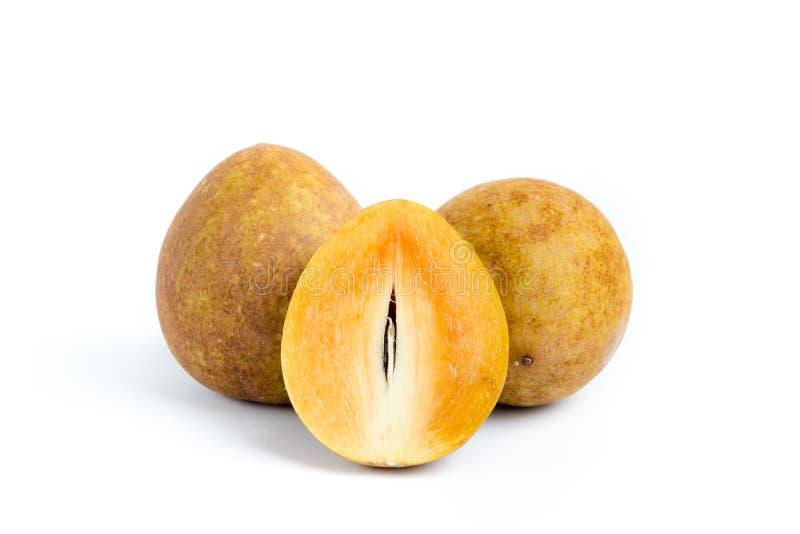 Chico fruit of Sapodilla met witte achtergrond royalty-vrije stock afbeelding
