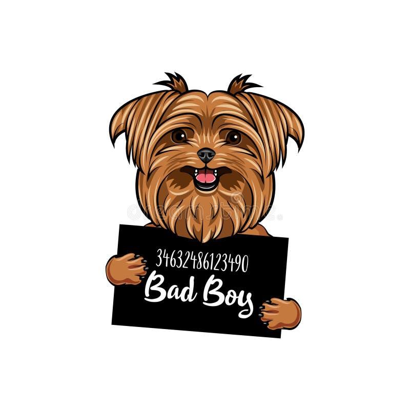 Chico malo del terrier de Yorkshire Prisión del perro Criminal del terrier de Yorkshire Foto de la detención Vector libre illustration