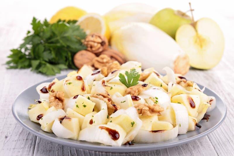 Chicory salad royalty free stock photos
