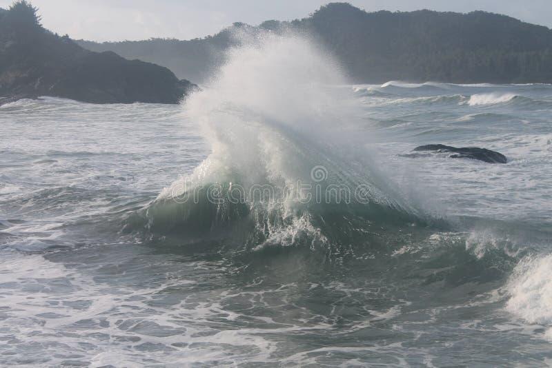 A chicotada do remoinho acena o poder de onda fotos de stock royalty free