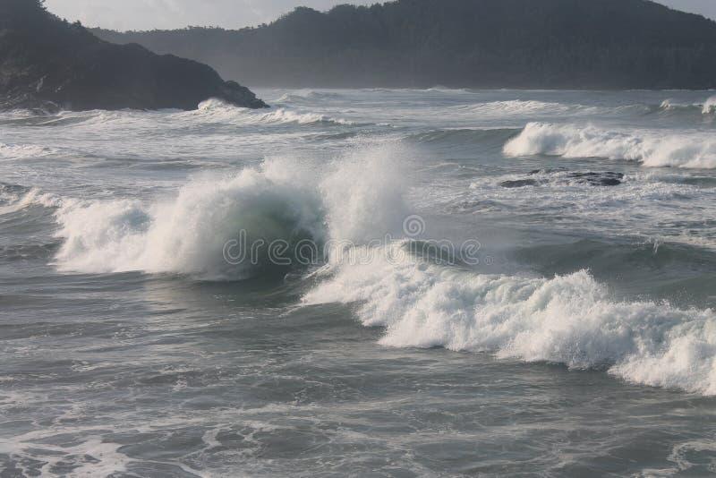 A chicotada do remoinho acena o poder de onda imagem de stock