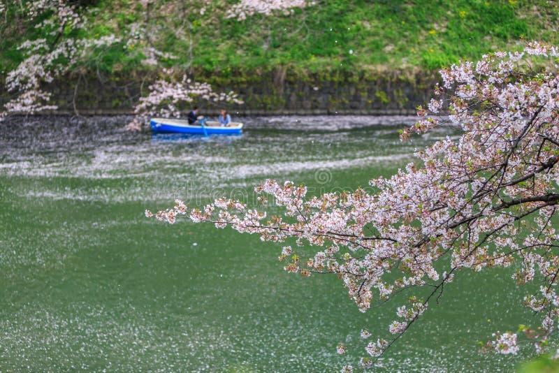 Chidorigafuchipark tijdens de lentetijd stock afbeelding
