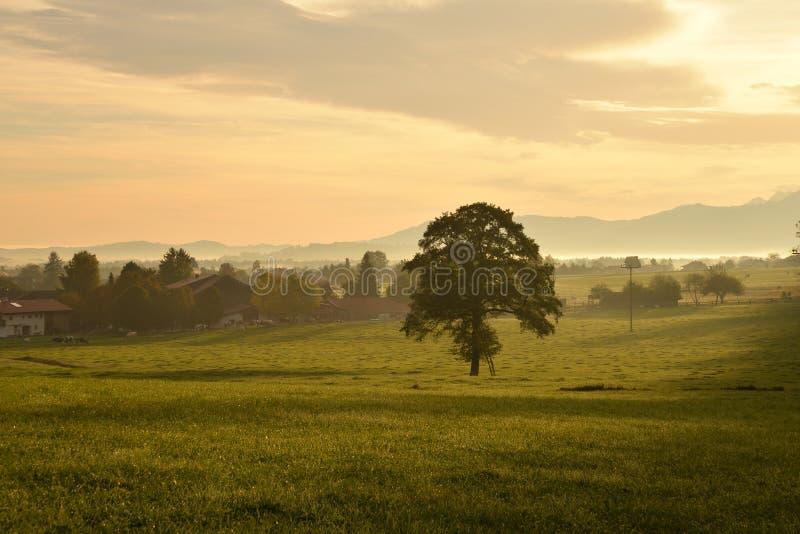 Chiemgau Bayern, Tyskland Tyskt bygdlandskap royaltyfri foto