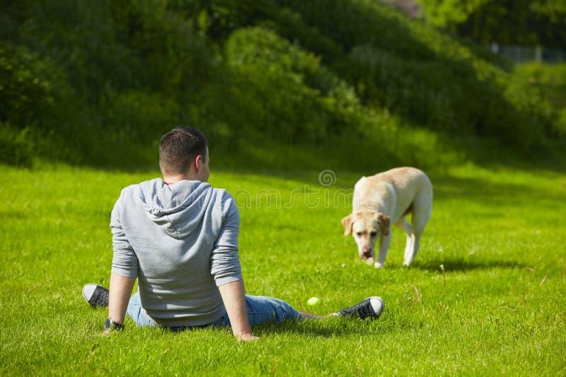 Chien avec le chien photo stock