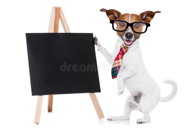 Chien d'affaires avec le tableau noir photo stock