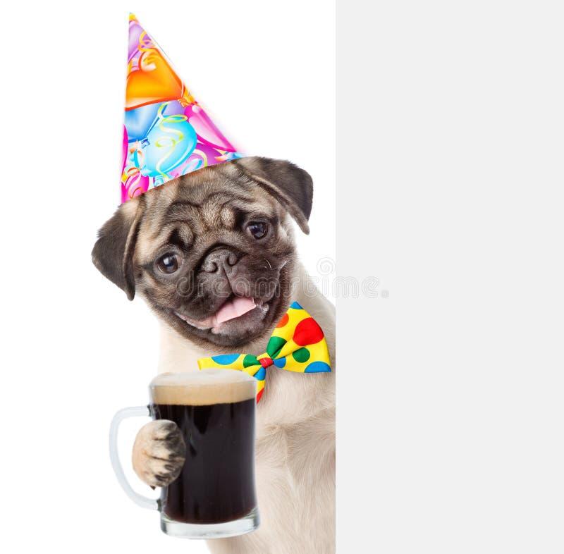 Chien dans le chapeau d'anniversaire tenant la bière jetant un coup d'oeil par derrière le conseil vide D'isolement photo stock