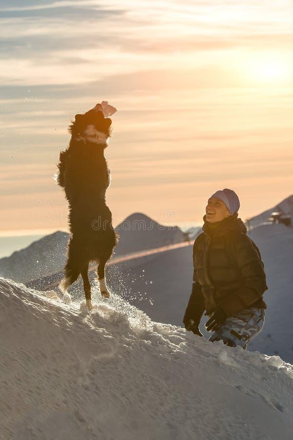 Chien de border collie jouant dans la neige avec sa maîtresse photos libres de droits