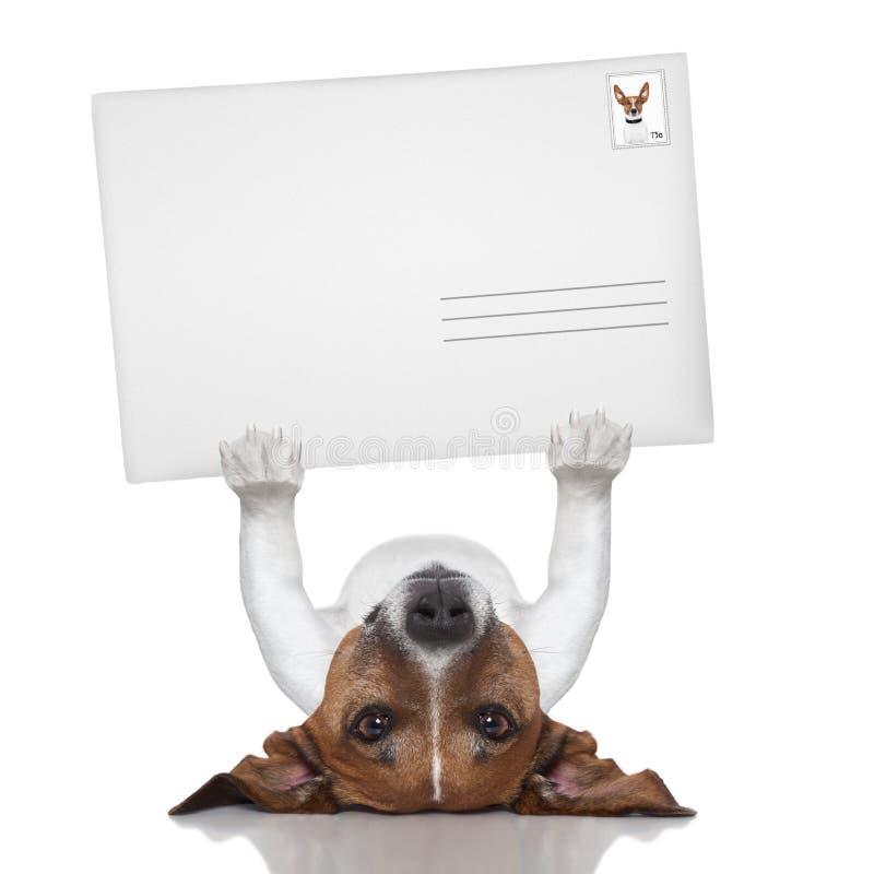 Chien de courrier image libre de droits