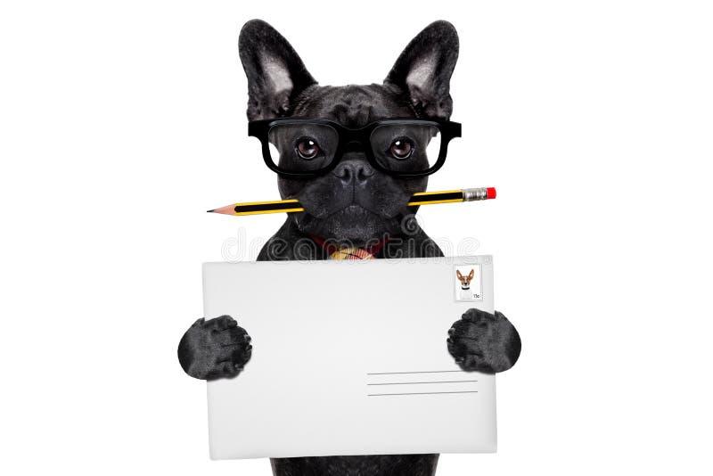 Chien de courrier de distribution du courrier photos libres de droits