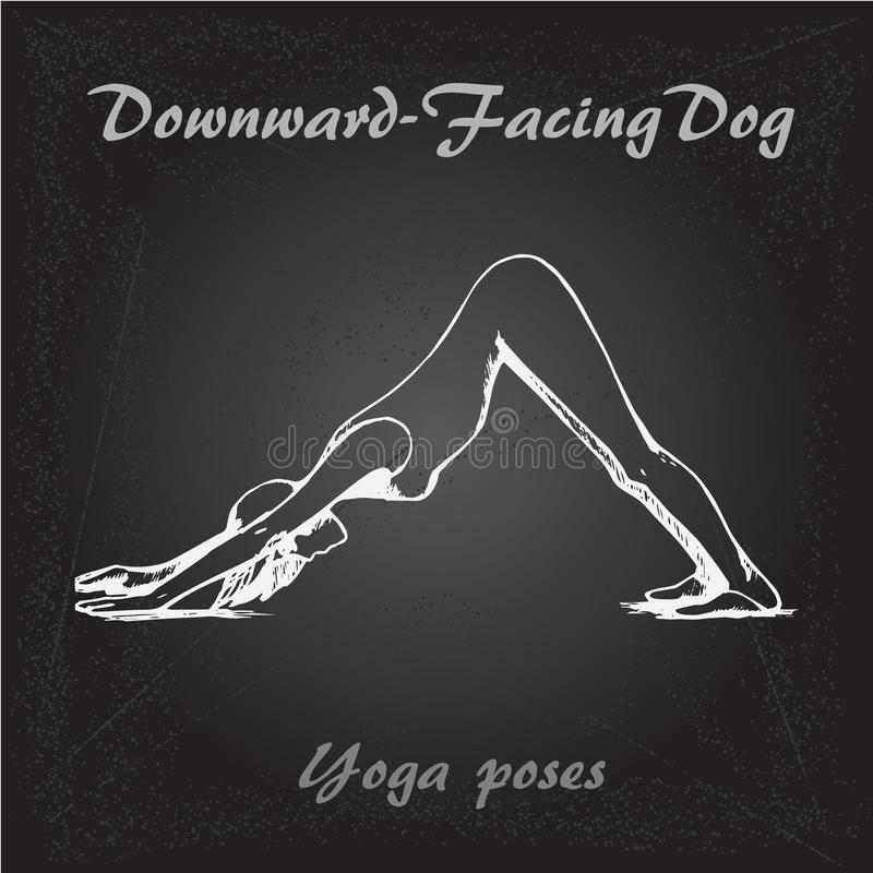 Chien de Dawnward-revêtement d'illustration de pose de yoga illustration libre de droits