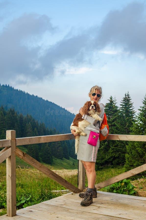 Chien de participation de femme, dans une montagne photographie stock