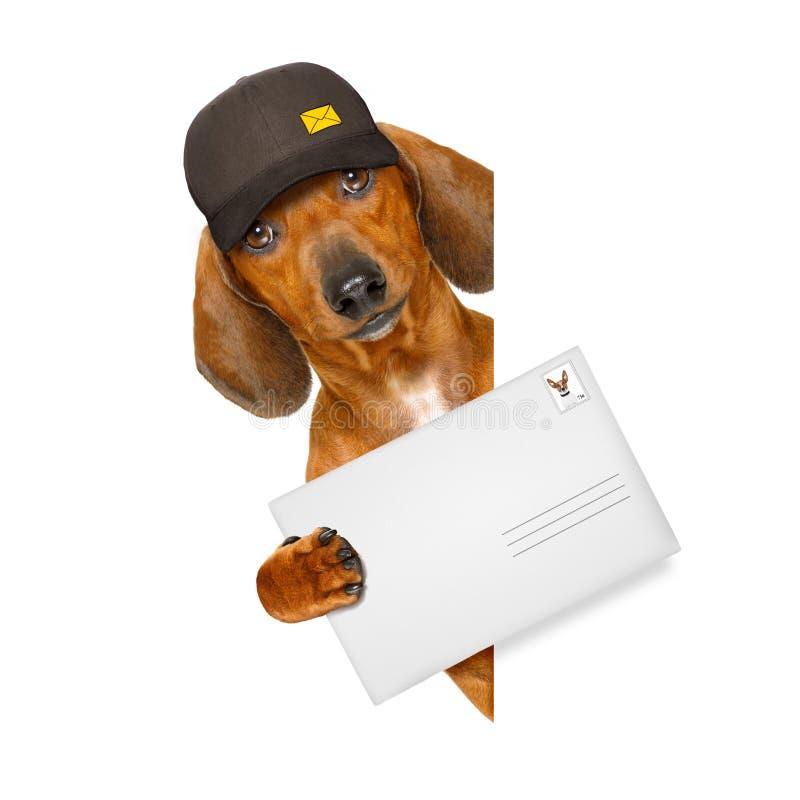 Chien de saucisse de teckel de la livraison de courrier photos libres de droits