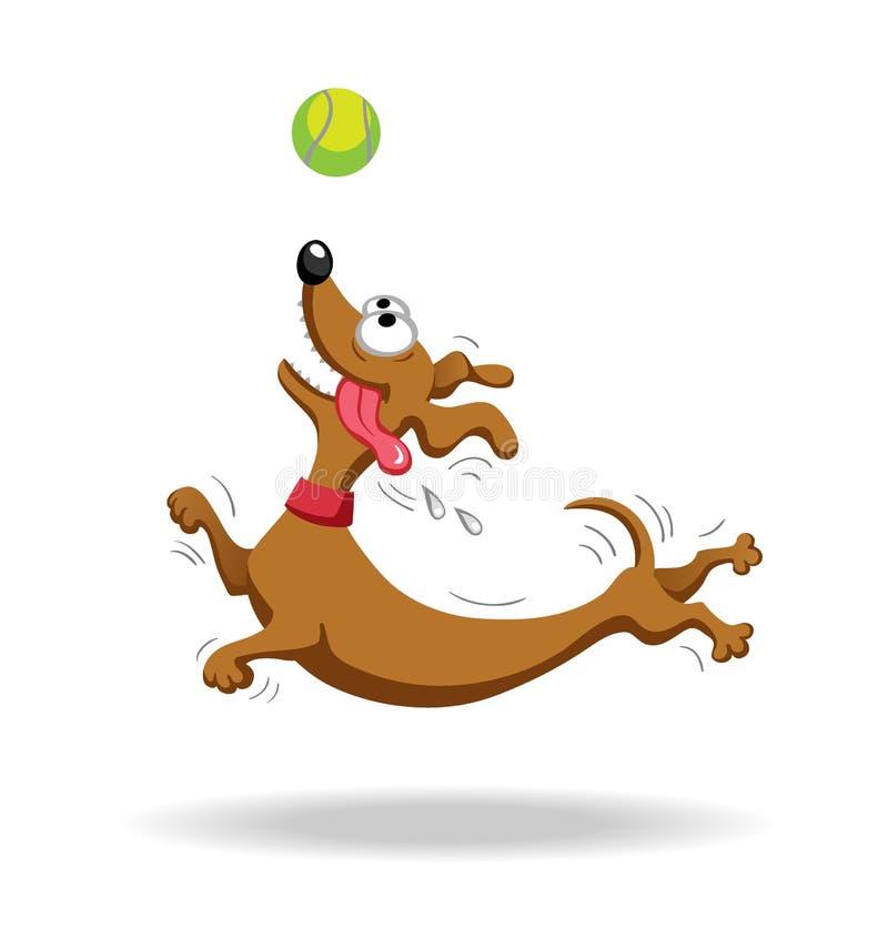 Chien de teckel jouant avec de la balle de tennis illustration de vecteur
