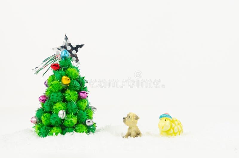 Chien et moutons regardant l'arbre de Noël d'isolement sur le backgroun blanc photographie stock libre de droits