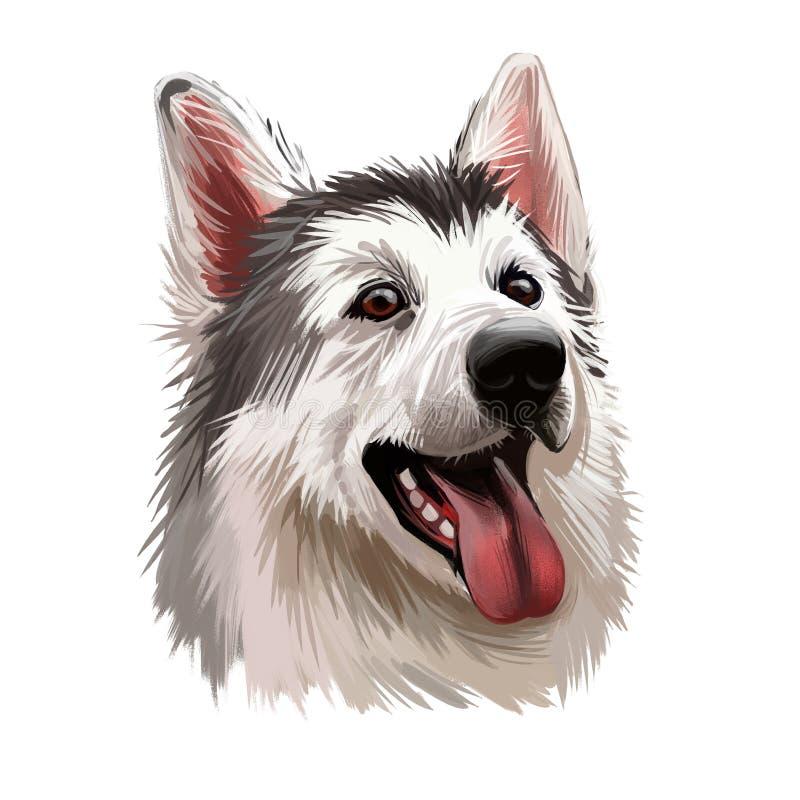 Chien inuit du Nord, portrait aquarelle du canis lupus familiaris closeuse art numérique Chiot isolé d'origine anglaise montrant illustration libre de droits