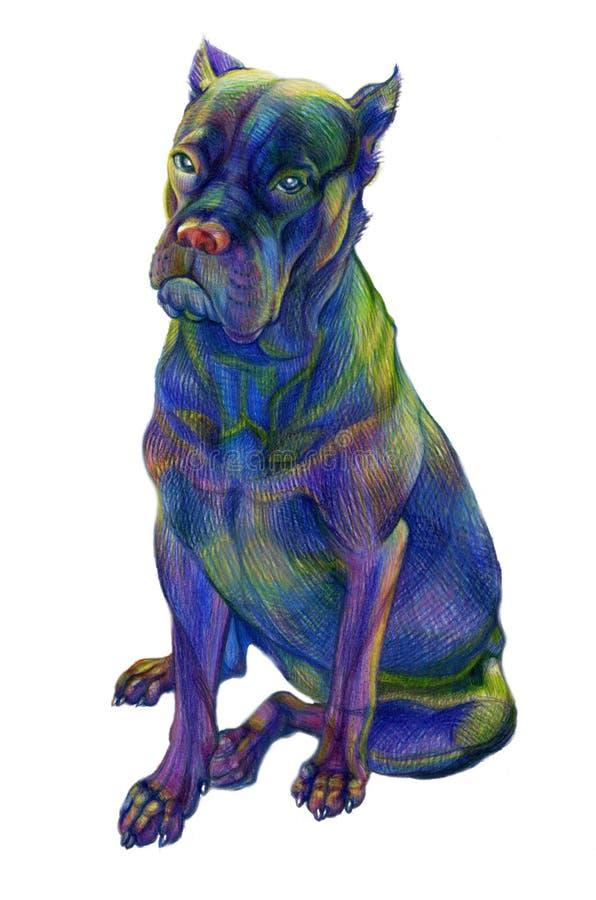 Chien seul coloré de crayons image libre de droits