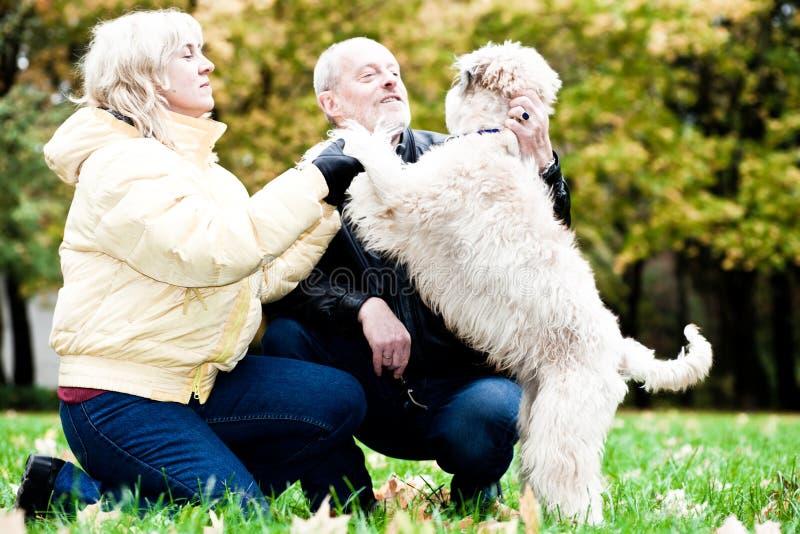 Chien terrier wheaten enduit mou irlandais d'étreinte de famille images libres de droits