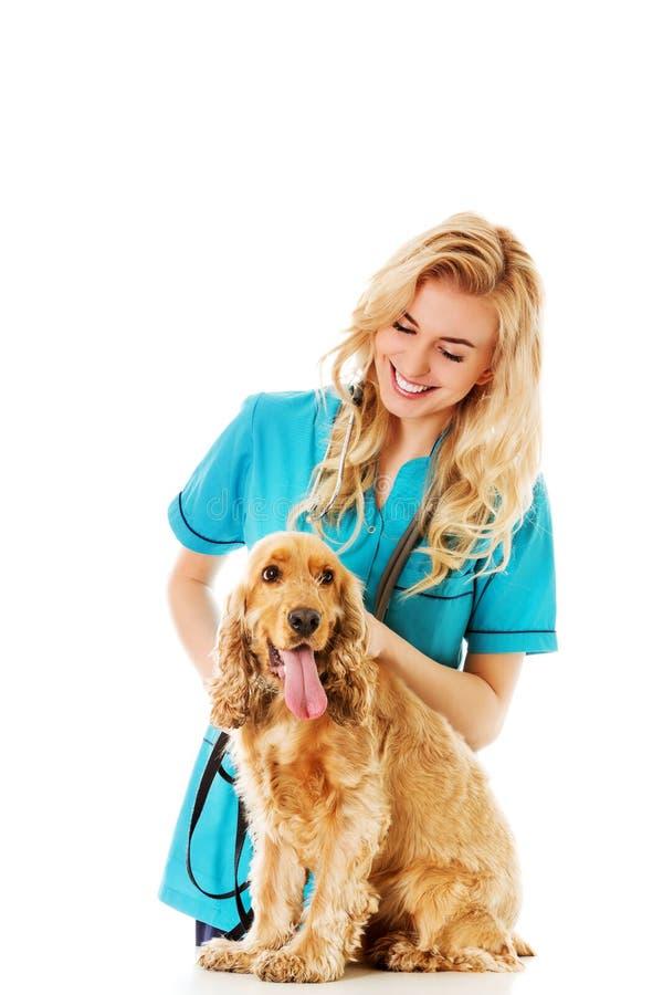Chien vétérinaire femelle d'examinng de sourire de jeunes photographie stock libre de droits