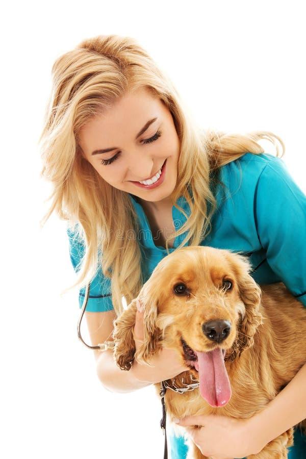 Chien vétérinaire femelle d'examinng de sourire de jeunes image libre de droits