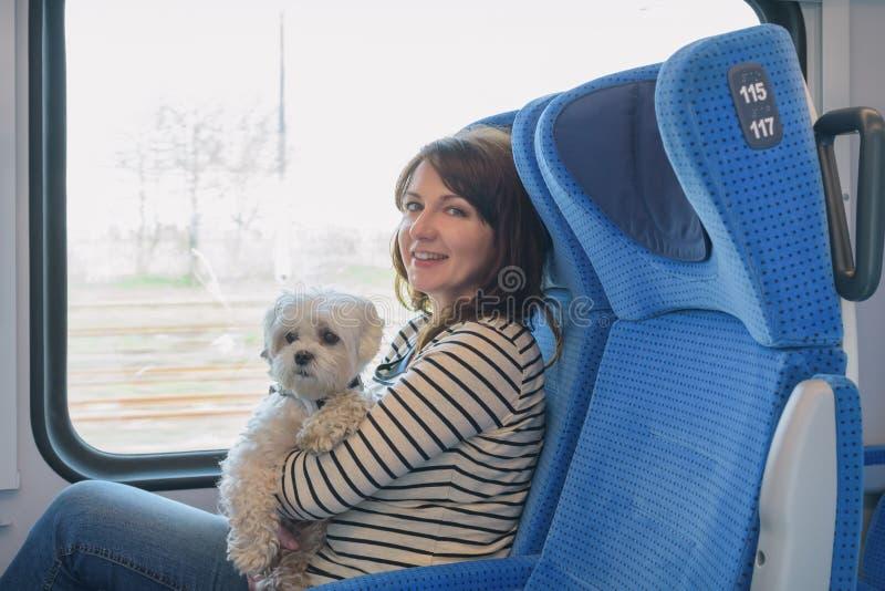 Chien voyageant par chemin de fer avec son propriétaire image libre de droits