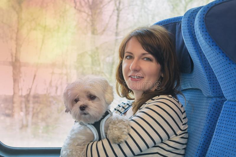 Chien voyageant par chemin de fer avec son propriétaire images libres de droits