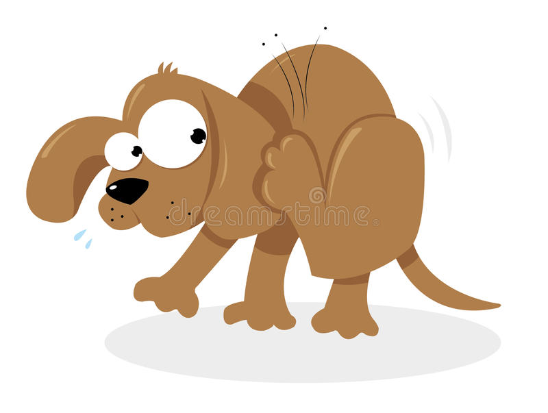 Chienchien et puces illustration stock