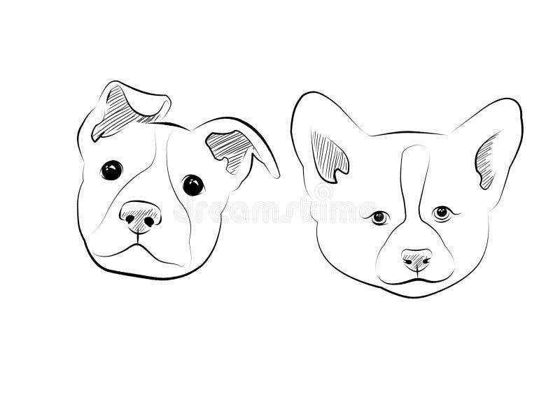 Download Chiens illustration stock. Illustration du dessin, graphisme - 77158873