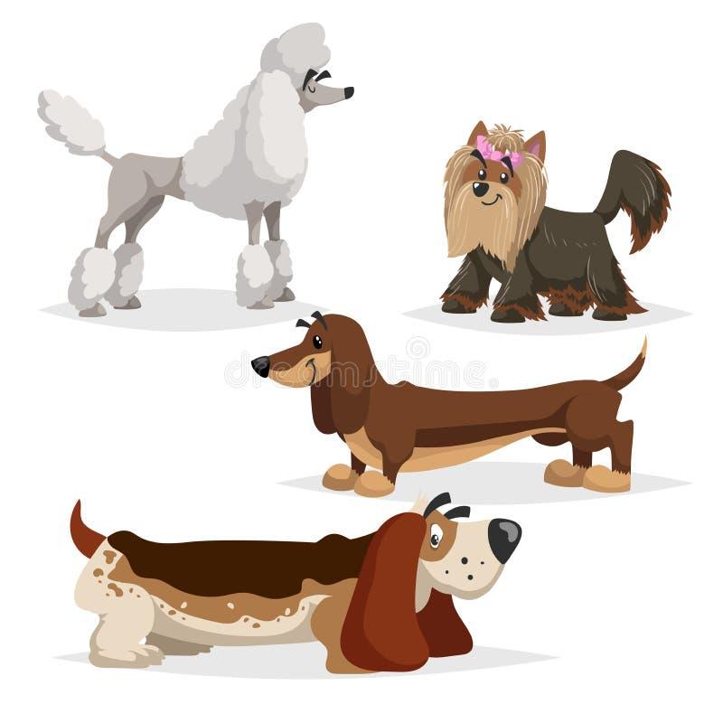 Chiens de race de bande dessinée réglés Caniche, terrier de Yorkshire, teckel et chien de basset Animaux familiers gais et aodrab illustration de vecteur