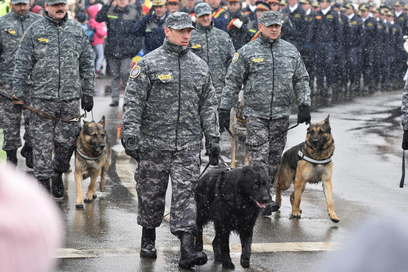 Chiens policiers et là entraîneurs à un événement national image libre de droits
