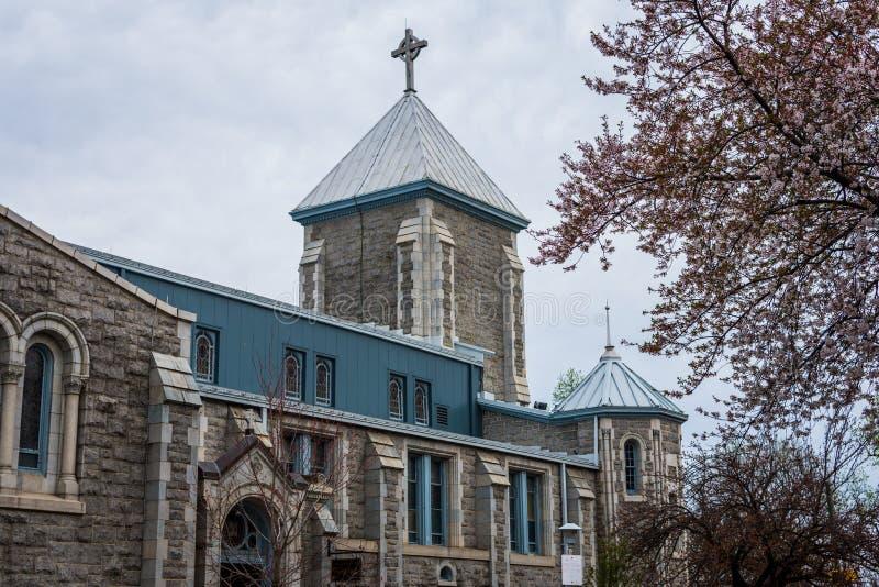 Chiesa cattolica di Elizabeth del san dal parco di patterson a Baltimora fotografie stock libere da diritti