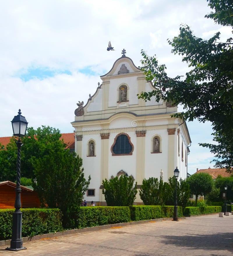 Chiesa cattolica ungherese in Vác Piccione di volo immagine stock libera da diritti