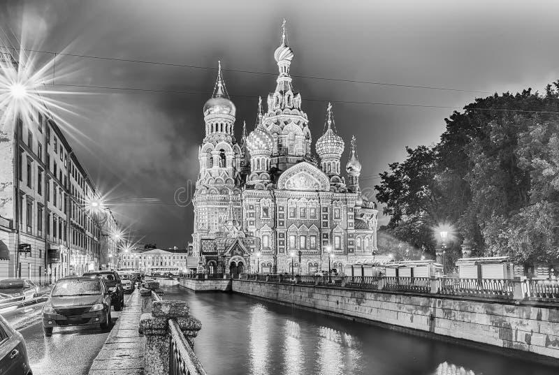 Chiesa del salvatore su sangue alla notte, St Petersburg fotografia stock