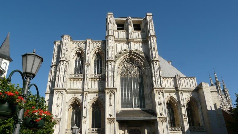 chiesa del St-peter e municipio Lovanio Belgio fotografie stock libere da diritti