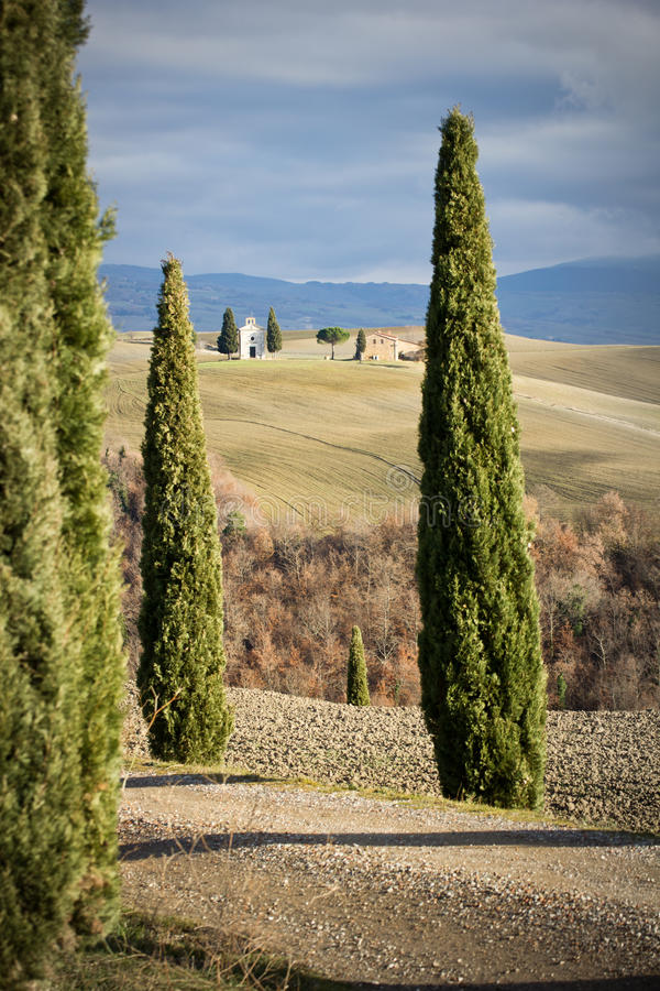 Chiesa fra i pini, Toscana (Italia). fotografia stock libera da diritti