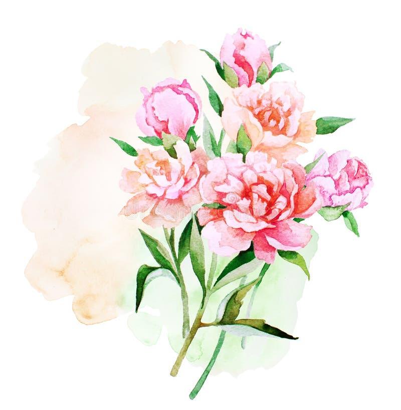 Chiffre de bouquet de fleurs et de bourgeons de pivoine d'aquarelle pair sur le fond d'éclaboussure illustration libre de droits