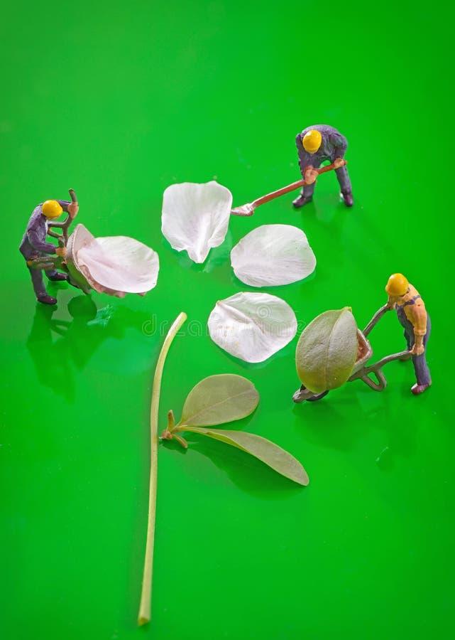 Chiffres miniatures fonctionnant pour créer la fleur de ressort images libres de droits