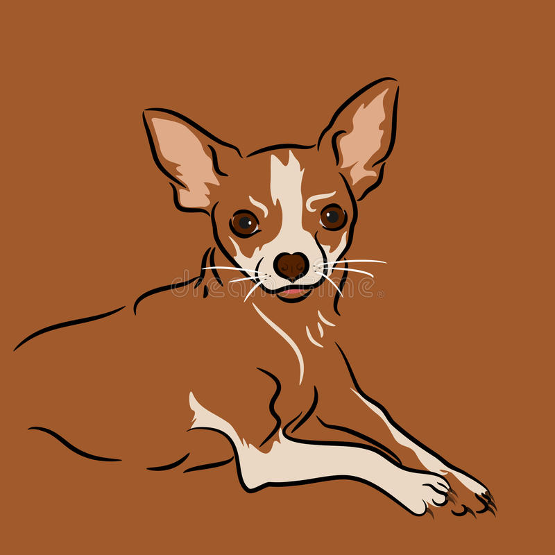 Chihuahua. Portrait drawn in a linear style royalty free illustration